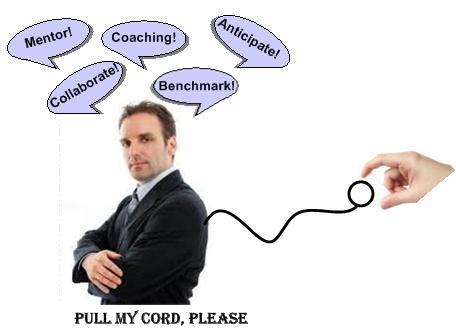 Pull Cord