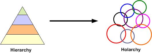 Hierarchy Holarchy