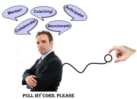 Exec Pull Cord
